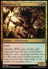 Bloodbraid Elf FOIL | NM | Eternal Masters | Magic MTG