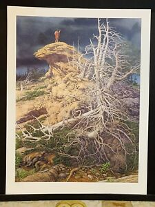 """Bev Doolittle """"Prayer for the Wild Things"""" Limited Ed Print Never Framed  #40965"""