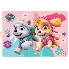 1 SET DE TABLE PAT PATROUILLE SKYE EVEREST PAW PATROL DISNEY 41 X 29 DECO