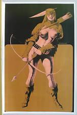 SUPERGIRLS Semi Nude FEMME GREEN ARROW PinUp Poster STERANKO