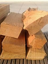 Apfel Grill Holz BBQ Räucherholz Smoker Wood 10 kg Apfelholz räuchern grillen 🌟