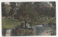 New Zealand, Botanical Gardens, Christchurch Postcard, B244