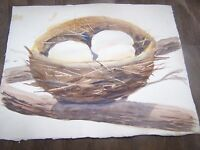 "Original Watercolor By Peg Humphreys, Birds Nest & Mountain Range 11""x13.75"""