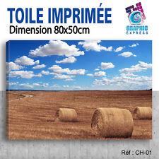 80x50cm TOILE IMPRIMEE- TABLEAU DECORATION MURALE- PAYSAGE CHAMPS CH-01
