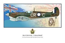 WWII WW2 RAAF MkV Spitfire Aviation Art Profile Photo Print - #2 of 3