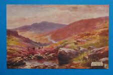 POSTCARD DARTMOOR Tuck's 'Dartmoor Near Yeo Tor' No.7748 (DM4-17)