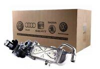 VW CADDY PASSAT CC B7 B7 GOLF VI VII 1.6 2.0 TDI GENUINE EGR VALVE COOLER