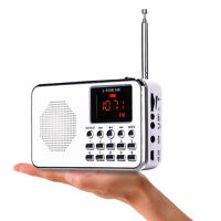 Portable FM/AM Radio Digital Mini Speaker Music MP3 Player AUX USB TF LED Light