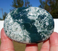 TREE AGATE Green & White Polished Crystal Palm Stone Stunning & Beautiful