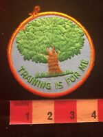 Vtg Big Tree TRAINING IS FOR ME Patch - Teaching / Instruction / Learning  82S