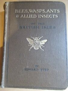 Book Bees Wasps Ants & Allied Insects Entomology Moths Lepidoptera Taxidermy