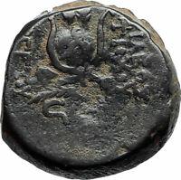ANTIOCHOS VII Sidetes Ancient 138BC Seleukid Greek Coin w EROS & ISIS Hat i75625