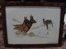 Chromolithographie animaliere  signé Van Den Driessche  editions gerfaut 1990
