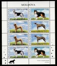 MOLDOVA 2006 FAUNA DOGS Mi.565-68 MNH SHEET, CV 15 EURO