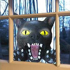 Scary Halloween Decoration Crazy Cat Head for House or Car | Halloween Cat Windo