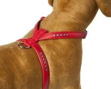 Doggy Things Bedazzled Chien Chiot Strass Harnais Xsmall rouge tour de poitrine 11 To 15 in (environ 38.10 cm)