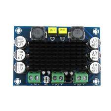 DC 12V-24V TPA3116 D2 100W Mono Channel Digital Audio Power Amplifier Board U
