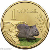 2008 Australia Land Series - Wombat, $1 UNC Coloured Carded Coin - RAM
