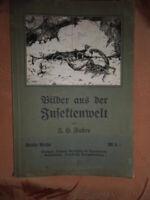 Bilder aus der Insektenwelt Fabre Zikade Dolchwespe Skorpion Mörtelbiene 3.Reihe