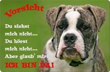 BULLDOGGE - A4 Metall Warnschild SCHILD Hundeschild Alu Türschild - BUD 02 T2