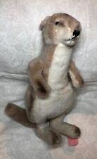 13� Steiff Plush Kangaroo Adorable Marsupial With Ear Button Tan & White #Bb