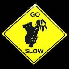 * Australien Koala Baer Traffic Poster Bild Australia Sign Go Slow Schild *140