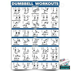 Dumbbell Workout Fitness Training Chart Exercise Poster PRINT *LAMINATED*