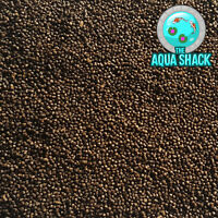 Sinking Goldfish Pellets - Fish Food Fancy Coldwater Pond Oranda Growth Protein