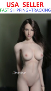 PHICEN 1/6 SCALE PALE skin Super-Flexible Seamless Body Sexy Beauty Doll set