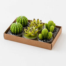 Cactus Tea Light Candles Set of 6 in Gift Box So Cute Southwest Western New