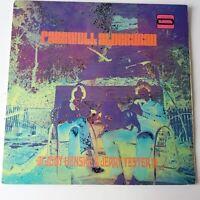 Judy Henske & Jerry Yester - Farewell Aldebaran - Vinyl LP 1st Press Rare Error