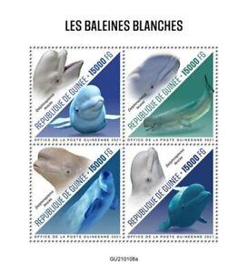Guinea - 2021 White Whales, Beluga - 4 Stamp Sheet - GU210108a