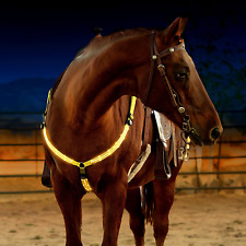 Led Horse Breastplate Collar - Usb Rechargeable - Best High Visibility Tack .