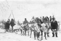 Alaska Corwin 1914 Nome Historic Photo Print Dog Teams Meeting the S.S