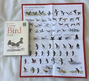 Concise Bird Guide (The Wildlife Trusts) Bloomsbury With Pull out Guide