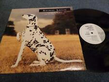 ANIMAL LOGIC - THERE'S A SPY (IN THE HOUSE OF LOVE) , VIRGIN 1989 , EX/EX ,12''