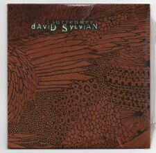 DAVID SYLVIAN MAXI CD SINGLE PROMO (NEW) I SURRENDER