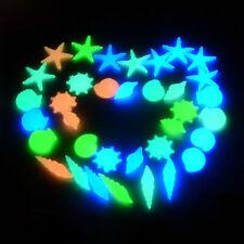 10 Glow In The Dark Pebbles Stones Luminous Illuminous Garden Outdoor Fish Tank