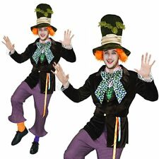 Mad Hatter Alice In Wonderland Mens Adult Disney Book Fancy Dress Costume Outfit