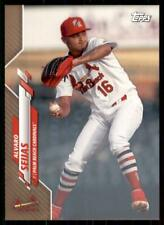 2020 Pro Debut Base Gold #PD-112 Alvaro Seijas /50 - Palm Beach Cardinals