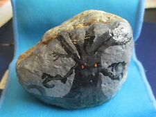 """""""Witching Tree"""" Paperweight/Pet Rock-Hand Painted"""