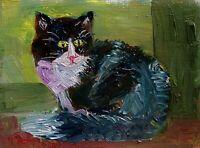 print ACEO Kitty Cat Devon Rex kitten Intense Stare cat kitten animal ATC pet