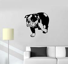 Vinyl Decal English Bulldog Funny Dog Pet Animal Wall Stickers Mural (ig296)