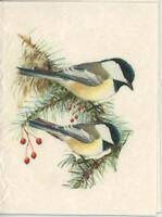 VINTAGE CHICKADEE BIRD PINE TREE SHABBY BERRIES CHIC PRIMITIVE CARD COTTON PRINT