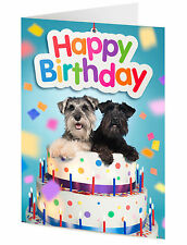 HAPPY BIRTHDAY CARD two funny miniature schnauzer dogs in a birthday cake