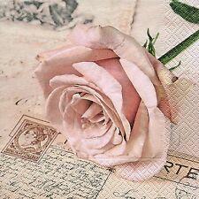 Paper Design Motivservietten Postcard Rose (30921704)