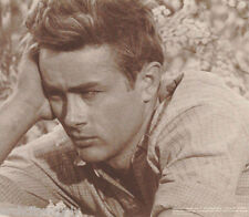 SMALL POSTER - ACTOR - JAMES DEAN - HAND ON HEAD - FREE SHIPPING ! #M053 RP58 JR