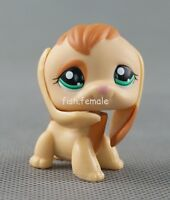 Littlest Pet Shop Ultra LPS 1664 Tan Brown Beagle Puppy Dog Green Eyes Girl Toys