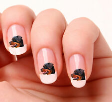 20 Nail Art Stickers Transfers Decals #602 - Rottweiler Dog Peel & Stick