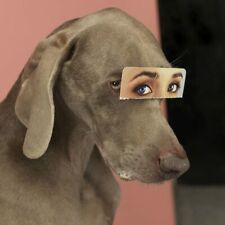 WILLIAM WEGMAN, FALSE EYES 2019 6 x 6 APERTURE MAGNUM LIMITED EDITION PRINT